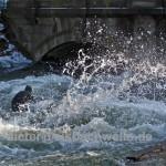 eisbach surfen spray-auf-eis-skulpturen
