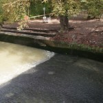 keine Welle im Eisbach Mnchen